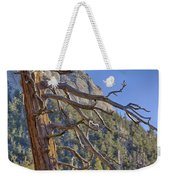 Tahquitz And The Pine Weekender Tote Bag