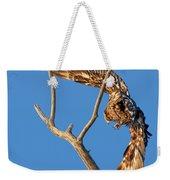 Taking Flight - Immature Bald Eagle Weekender Tote Bag