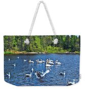 Taking Flight In Ontario Weekender Tote Bag