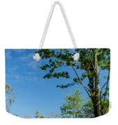 Tall Tree And Temple Weekender Tote Bag