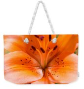 Tangerine Daylily Closeup Weekender Tote Bag