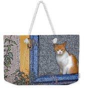 Taos Cat Weekender Tote Bag