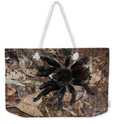 Tarantula Amazon Brazil Weekender Tote Bag