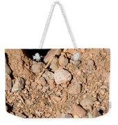 Tarantula Takes Scorpion 5 Of 5 Weekender Tote Bag