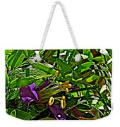 Tarbush In Santa Elena Canyon In Big Bend National Park-texas  Weekender Tote Bag