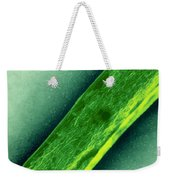 Tem Of Mycobacterium Tuberculosis Weekender Tote Bag by Kwangshin Kim