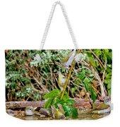 Tennessee Warblers Weekender Tote Bag