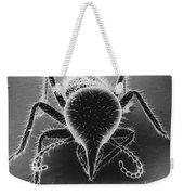 Termite Soldier Weekender Tote Bag by David M. Phillips