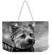 Terrier - Dog - Playing With Light Weekender Tote Bag