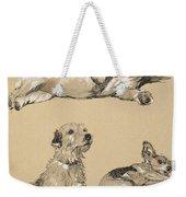 Terriers, 1930, Illustrations Weekender Tote Bag
