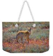 Teton Coyote Weekender Tote Bag