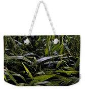 Texas Grasses Weekender Tote Bag
