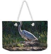 Texas Coastal Birds Weekender Tote Bag