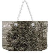 Texas Winery Tree And Vineyard Weekender Tote Bag