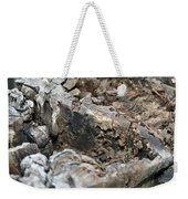 Textured Tree Stump Of Eucalyptus Tree  Weekender Tote Bag