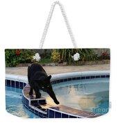 The Adventurous Feline Weekender Tote Bag