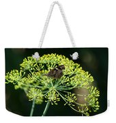 The American Snout Butterfly Weekender Tote Bag