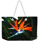 The Beauty Of A Bird Of Paradise Weekender Tote Bag