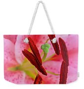 The Beauty Of A Stargazer Weekender Tote Bag