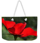 The Beauty Of Imperfection Weekender Tote Bag
