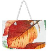 The Beauty Of Nature  Weekender Tote Bag