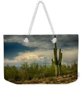 The Beauty Of The Desert Southwest  Weekender Tote Bag