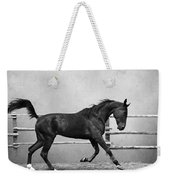 The Beauty Of The Horse Weekender Tote Bag