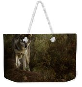 The Big And Not Too Bad Wolf Weekender Tote Bag