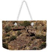 The Bighorn Uwe Weekender Tote Bag