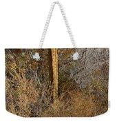 The Birdhouse Kingdom - Western Kingbird Weekender Tote Bag