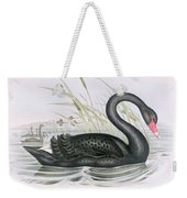 The Black Swan Weekender Tote Bag by John Gould