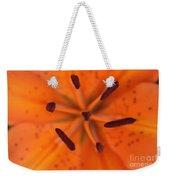 The Botanical Illusion Weekender Tote Bag