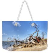 The Bottle Tree Weekender Tote Bag