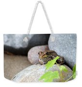 The Bronze Frog Weekender Tote Bag