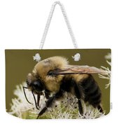 The Bumble Bee.. Weekender Tote Bag