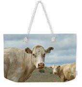 The Cows Weekender Tote Bag