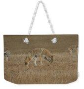 The Coyotes Weekender Tote Bag