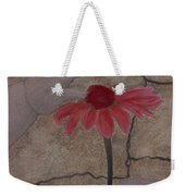 The Creation Of Eve Weekender Tote Bag by Barbara St Jean