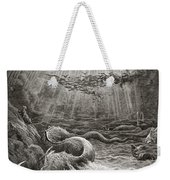 The Creation Of Fish And Birds Weekender Tote Bag