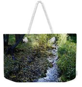 The Creek At Finch Arboretum Weekender Tote Bag
