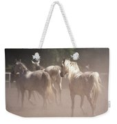 The Daughters Of The Desert Weekender Tote Bag