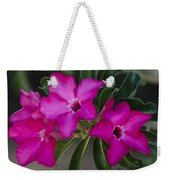 The Desert Rose  Weekender Tote Bag