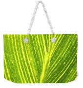 The Detail Of Plant Leaf, Salt Lake Weekender Tote Bag