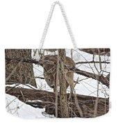 The Doe And The Snow - Odocoileus Virginianus Weekender Tote Bag