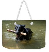 The Dog Days Of Summer Weekender Tote Bag