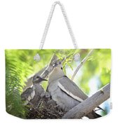 The Dove Family  Weekender Tote Bag