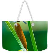 The Dragon Weekender Tote Bag