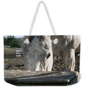 The Drinking Fountain Weekender Tote Bag