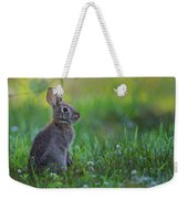 The Eastern Cottontail Weekender Tote Bag