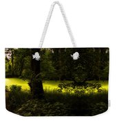 The End Of The Path Mirror Image Weekender Tote Bag
